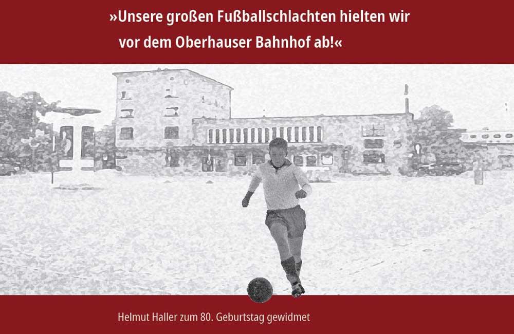 Coverbild-Hallerbuch